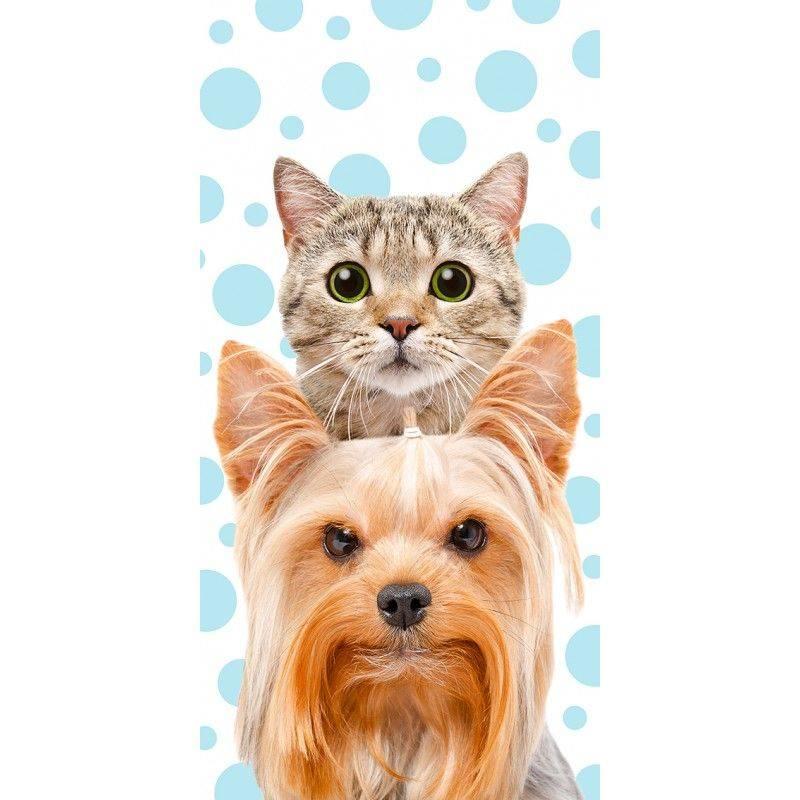 Osuška Kočka a pes 70/140cm